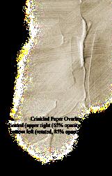 crinkled-paper